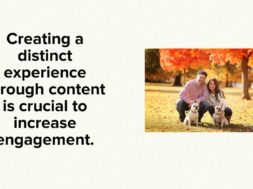 Engage and Re-Engage Your Donors Now