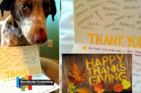 9 Best Ways to Thank Your Donors Now