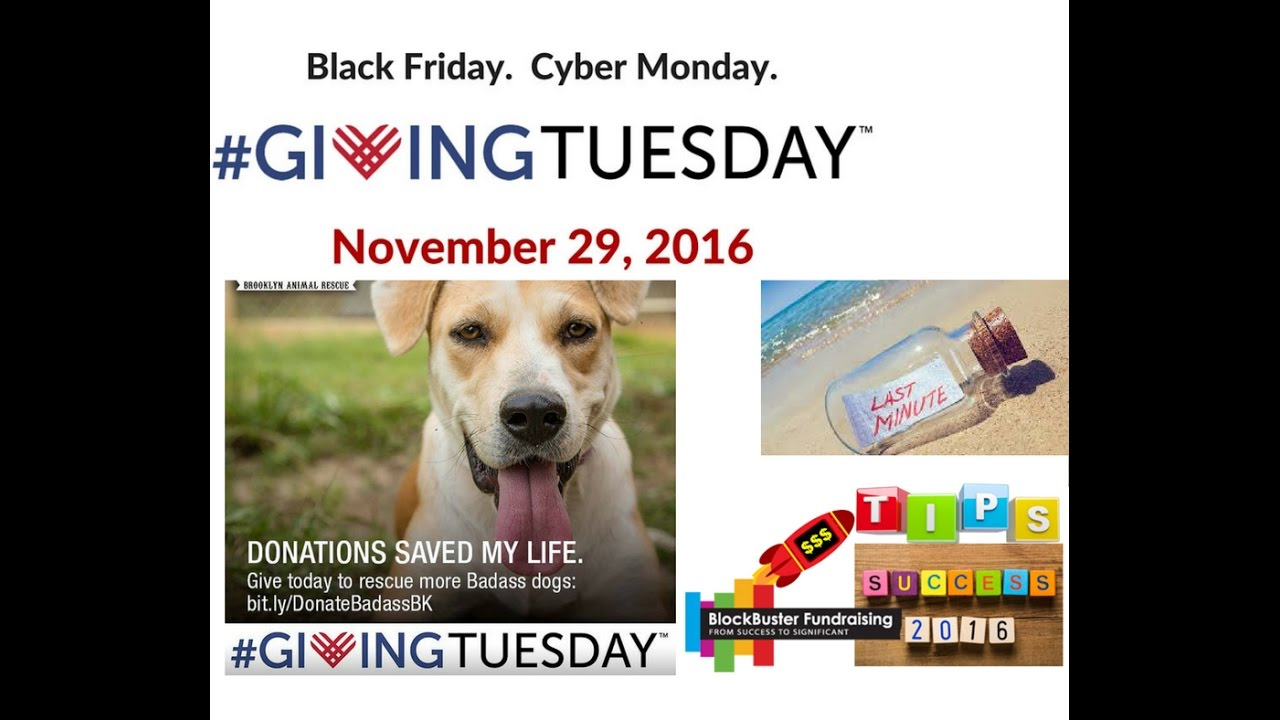 #GIVINGTUESDAY Best Last Minute Tips