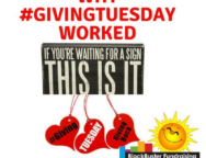 why givingtuesday worked 2017